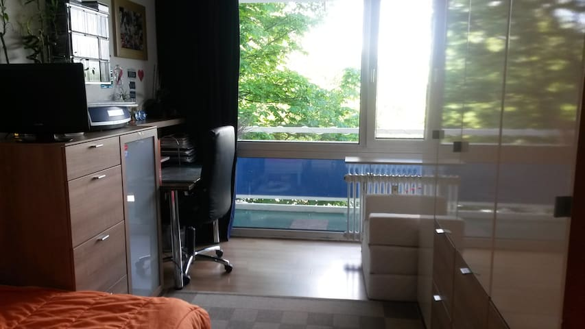 Helles Zimmer in Eschborn, nahe GIZ - Eschborn - Apartment