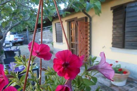Agri Fontevecchia camera Vetalu - Vetulonia