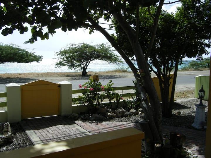Premier Dive/Snorkel area on Aruba