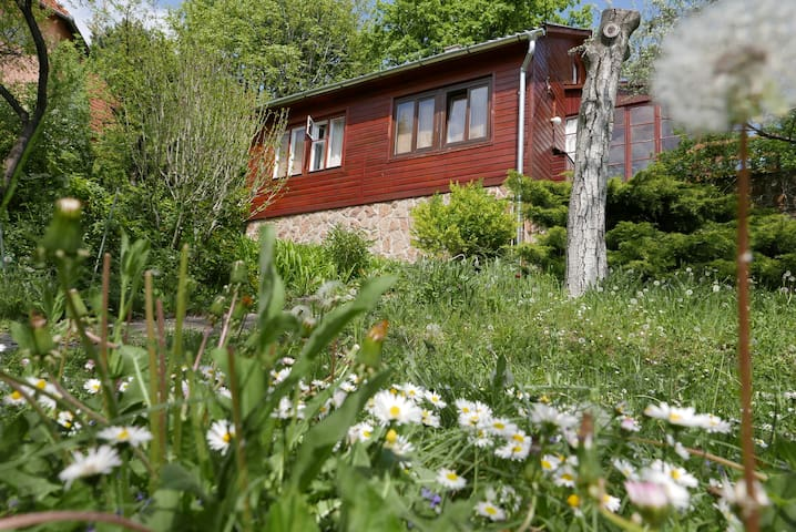 Ház a zöldben nagy kerttel - Diósd - Talo