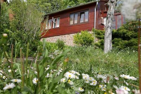 Ház a zöldben nagy kerttel - Diósd