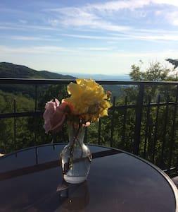 casa wilma - Monticello Amiata - Hus