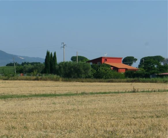 Casetta Rossa in Maremma Toscana - Grosseto