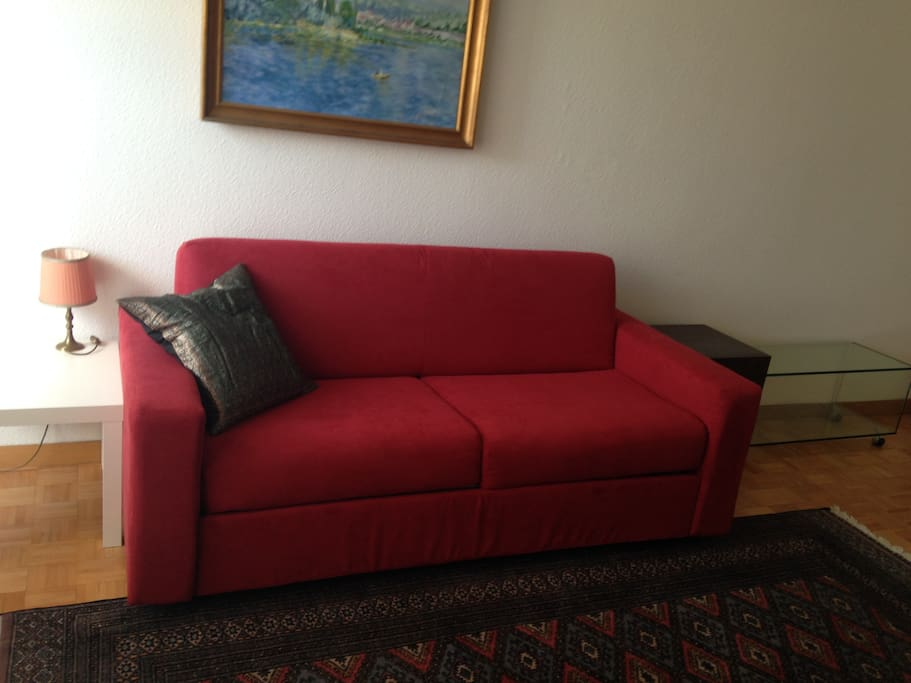 New comfortable red sofa-bed