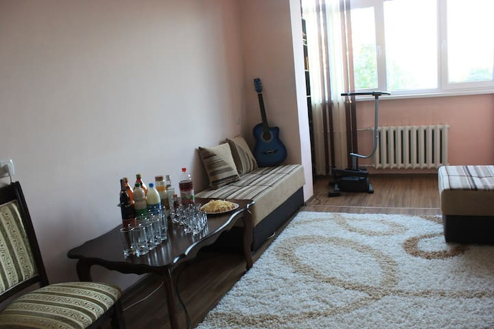 A comfortable room to stay - Bishkek - Apartamento