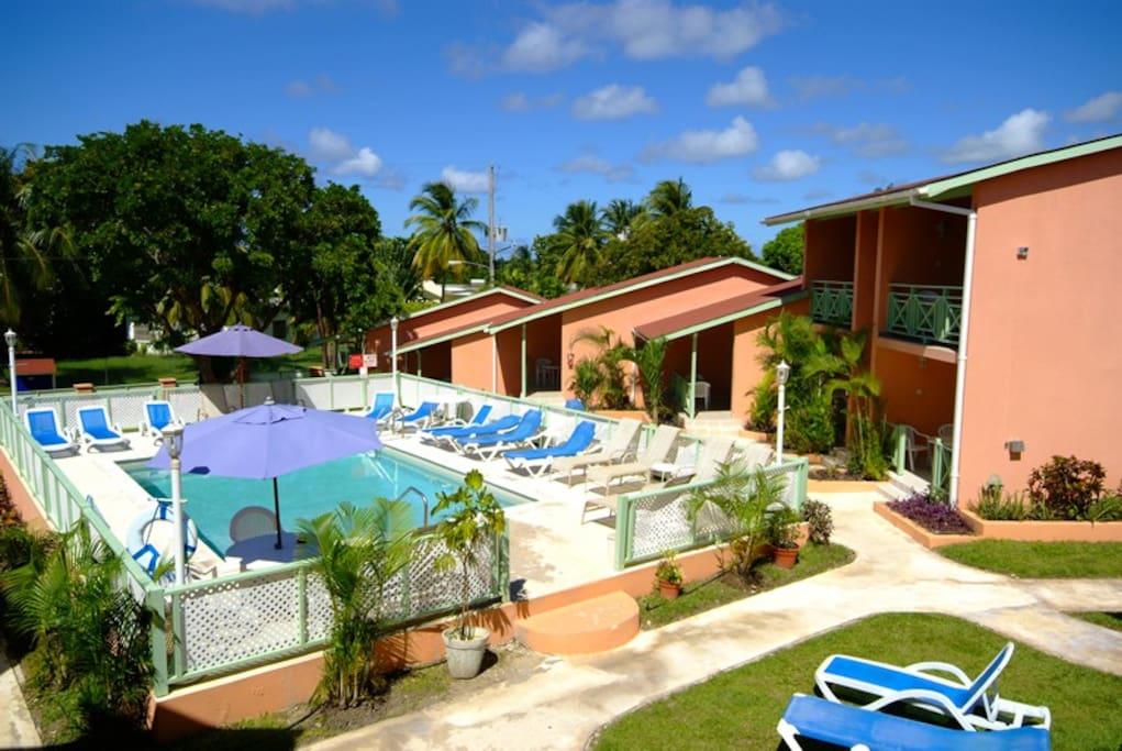 West Coast Halcyon Palm Apartments close to beach ...