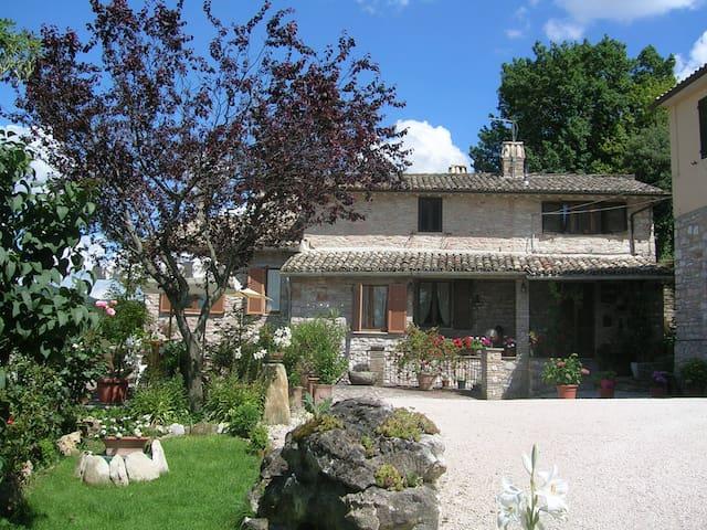 CASA VACANZE&APARTMENTS IN ASSISI - Assisi - Apartment