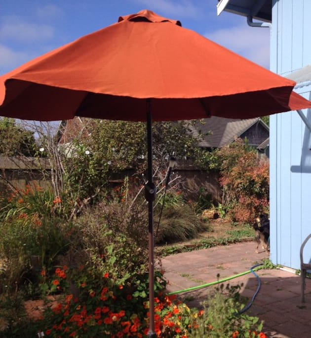 Canopy for morning coffee outside door