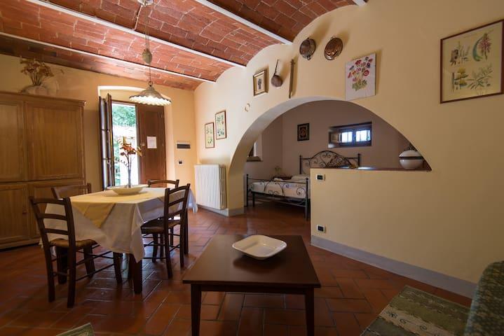 Giotto - Provincia di Arezzo - Vila