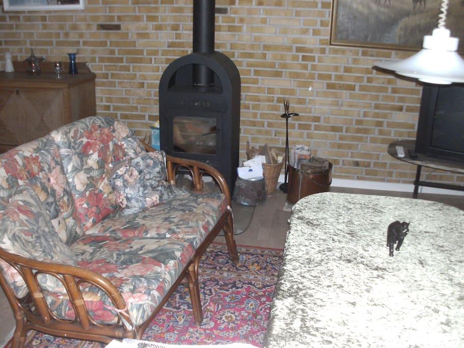 brændeoven med ekstra sofabord og siddepladser