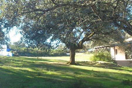 Casa Rural para 4 personas - El Peralejo - Talo