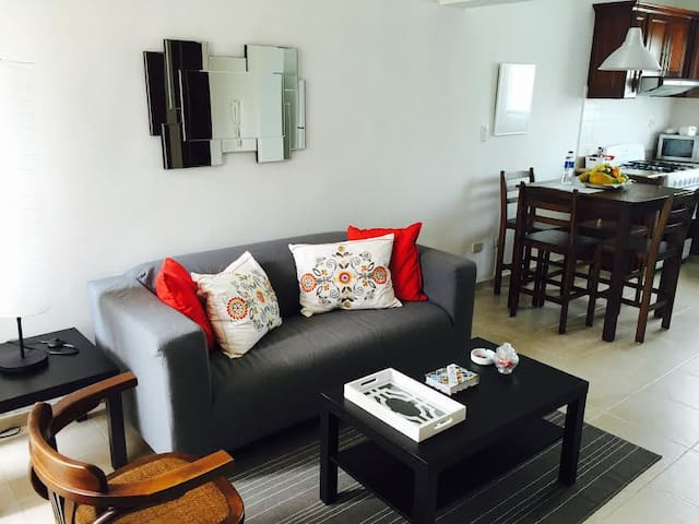 Cozy and central 1 BR apt - Santo Domingo - Apartment