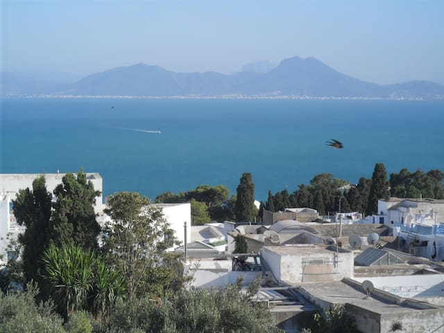 Nice place to be in SidiBouSaïd 3G. - SIDI BOU SAID Carthago - Apartamento