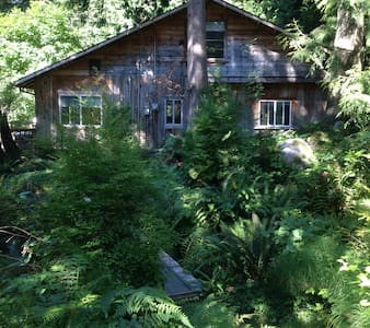 Creek Side Cabin - Roberts Creek