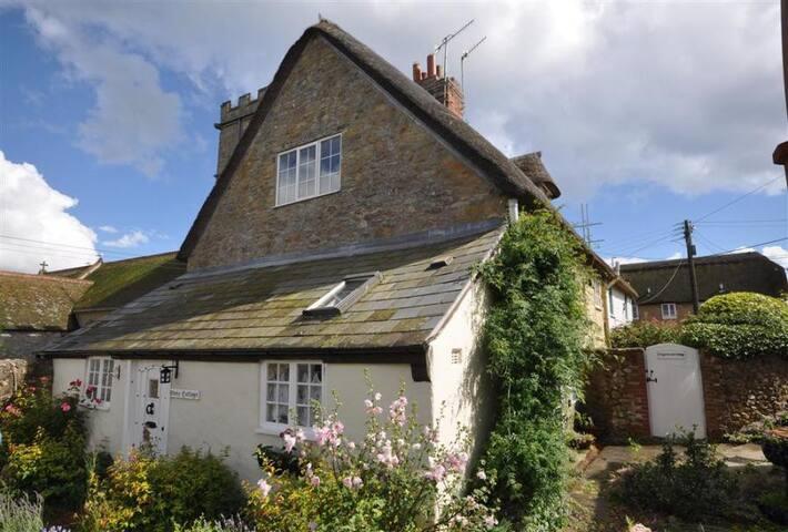 Charming Coastal Pet Friendly Cottage near Pubs