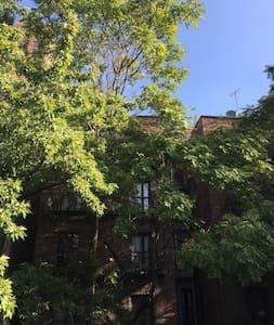 Peaceful Studio Apartment In Central Manhattan - Leilighet