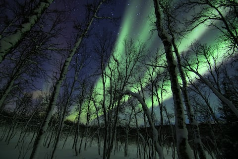 Norther Lights at Polar Cabin