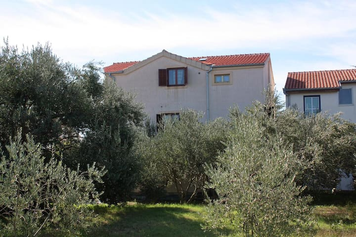 Studio flat near beach Bibinje, Zadar (AS-5769-b)