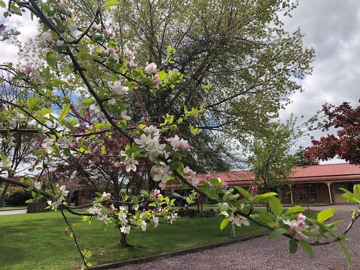 Wonderful Garden Cobden