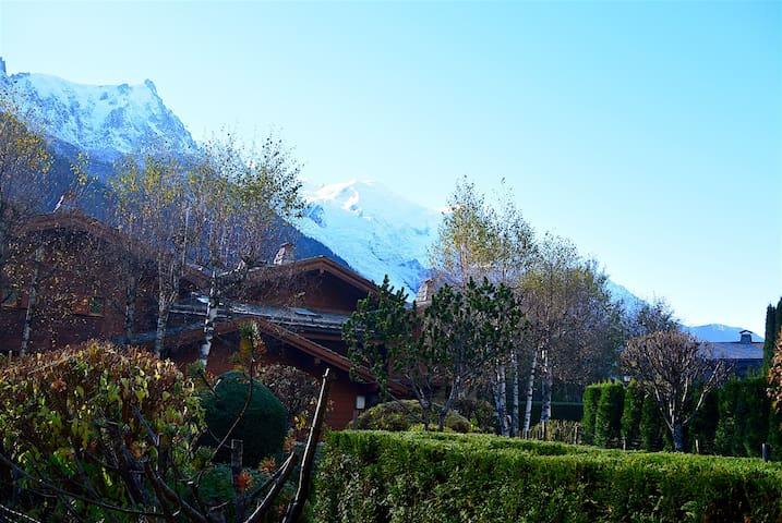 Chalet cosy au coeur de la plaine des Praz - Chamonix - Dağ Evi
