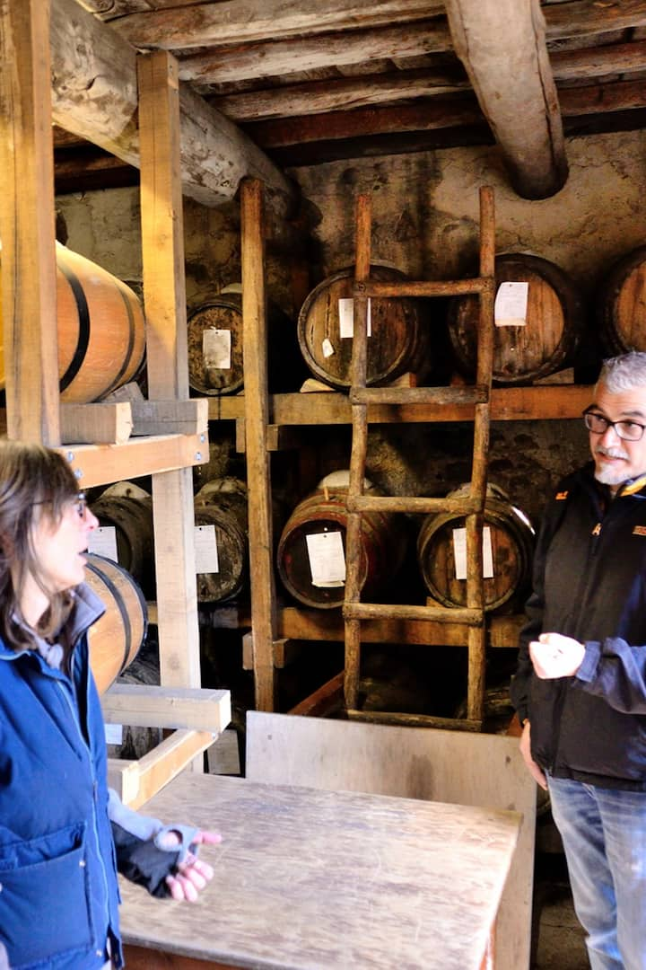 Learn about methods of winemaking