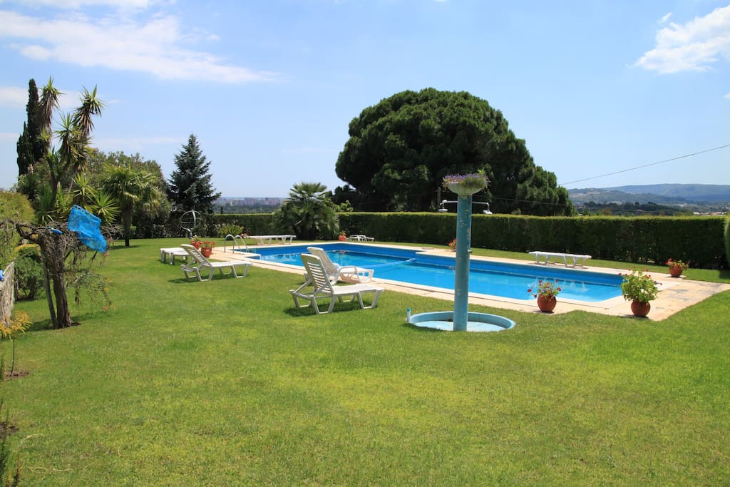 Swimming pool / Garden