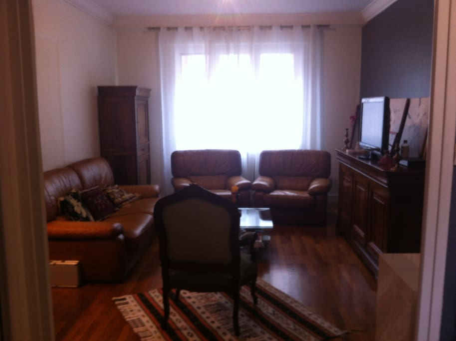 Chambre dans t4 cosy appartements louer grenoble for Location chambre grenoble