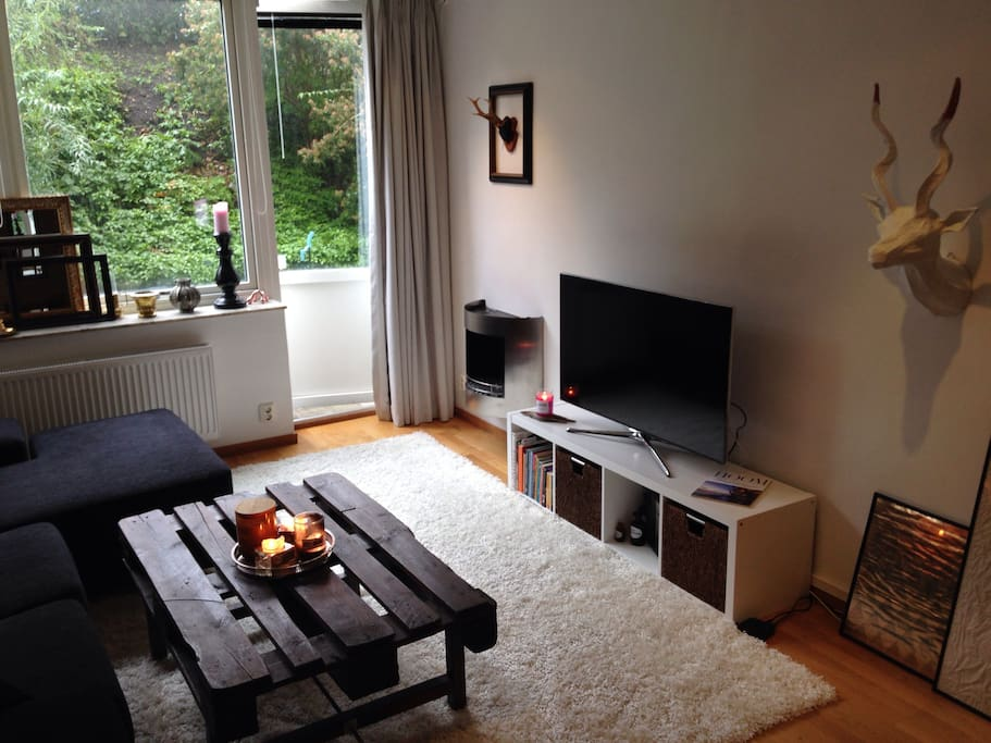 Cozy living room with flat screen smart tv