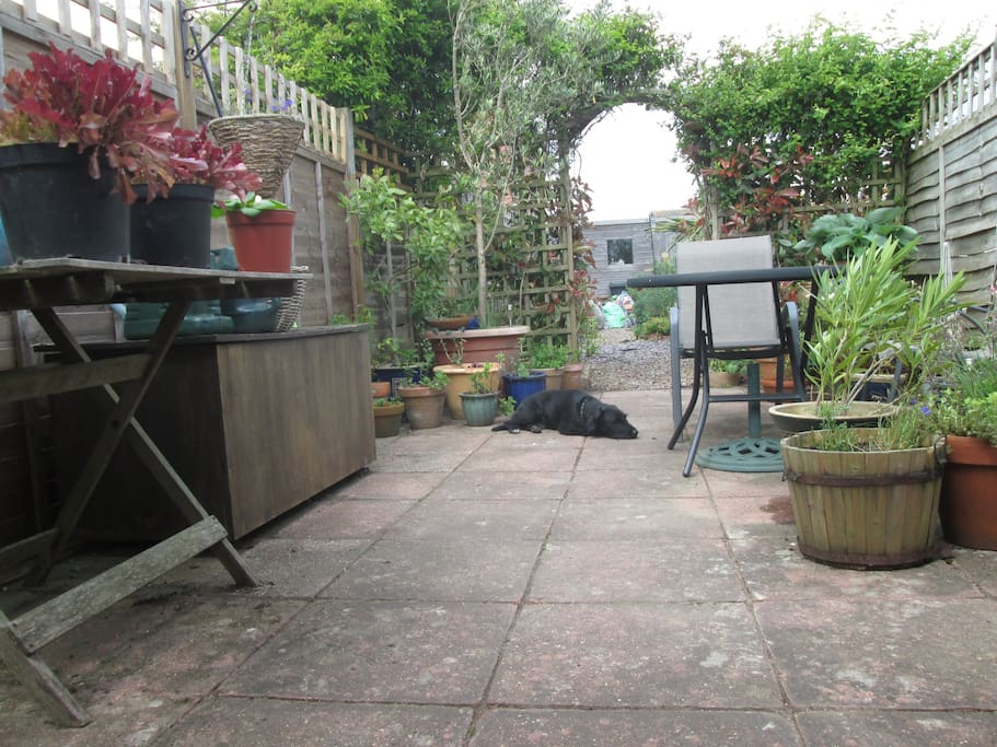 Rudi the dog has several favourite spots to relax