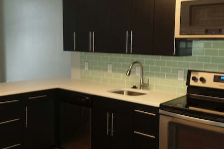 1 bedroom apt steps from Red Line.