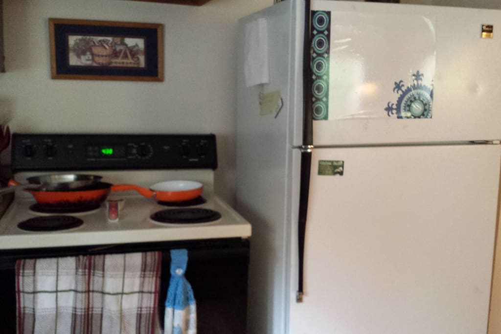electric stove and refrigerator, do have new refrigerator as well, not the one posted