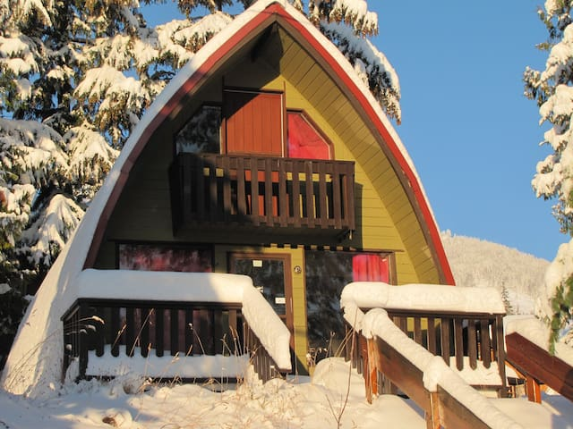 Red Mountain cabin sleeps 4