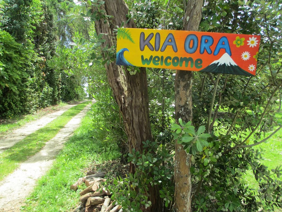 Kia ora and welcome to Onaero