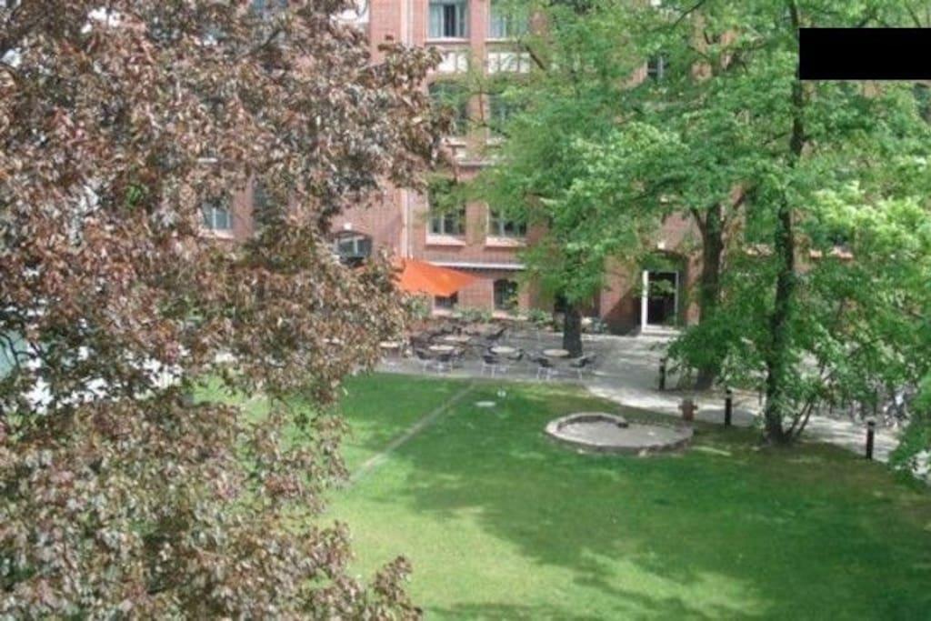 Blick in den sonnigen Hof-Garten aus Zimmerrichtung