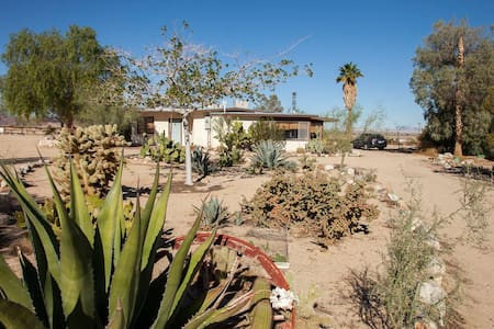Midcentury Desert Escape - House