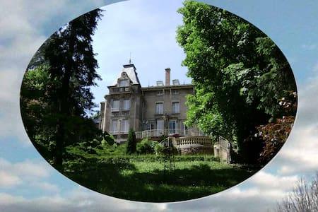 un manoir à Tarare - Château