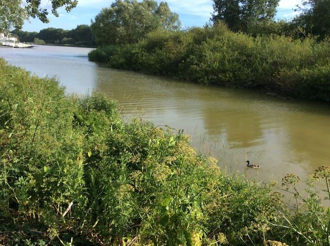 Le charme du bord de Loire à proximité de Nantes