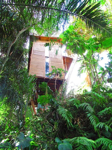 hars garden tree houses/love the nature and food