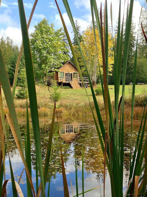 """The """"Pond Cottage"""" is a Roomy Tiny House on a Private, Exclusive Pond"""