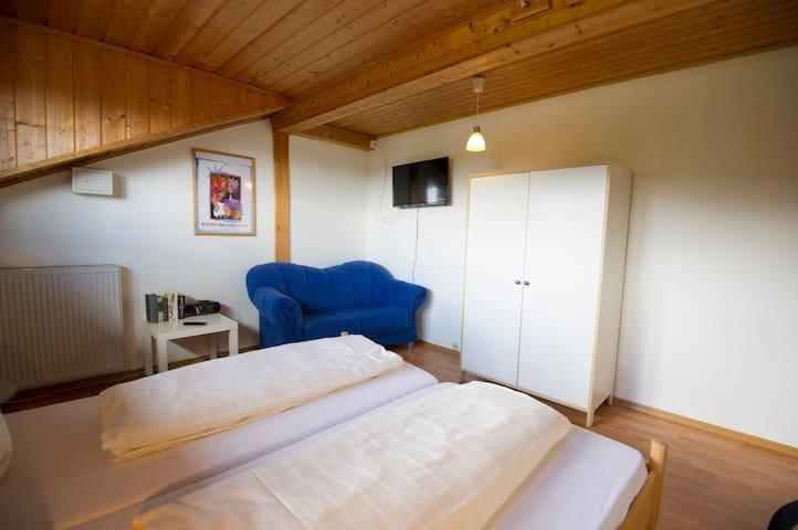 Hotel-Pension Anke (Bodenmais), Appartment mit einem Schlafzimmer