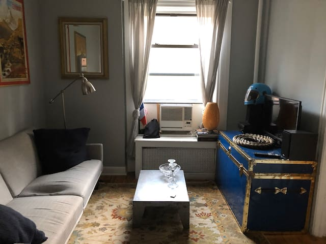 Room in charming West Village Apartment