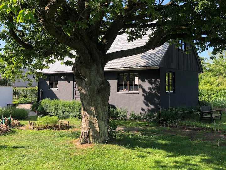 Our little black guesthouse for rent