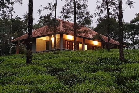 Abode by the Tea Garden, Vagamon