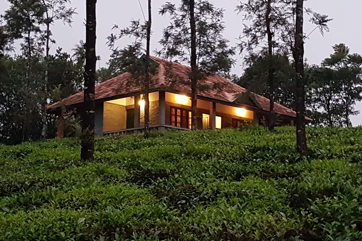 Nestled on a hillock called Kompan Nirappu is Abode, a cottage by the tea garden where mist plays hide & seek. The whistling wind and the chirping forest birds sing the tunes of your heart. Come for a sojourn .........