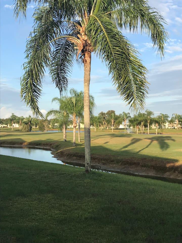 Back yard- golf course