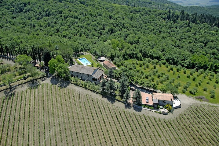 Villa and Cottage in the heart of Chianti