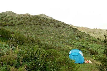 (BN) TENT IN THE MOUNTAIN - Buenavista del Norte - Tent