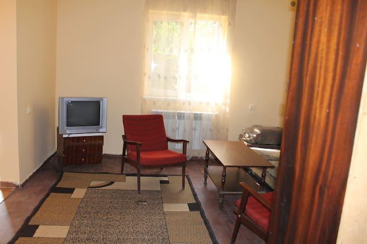 Собственный дом с садом - Yerevan - Apartment