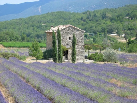 Prettiest cottage in Provence!