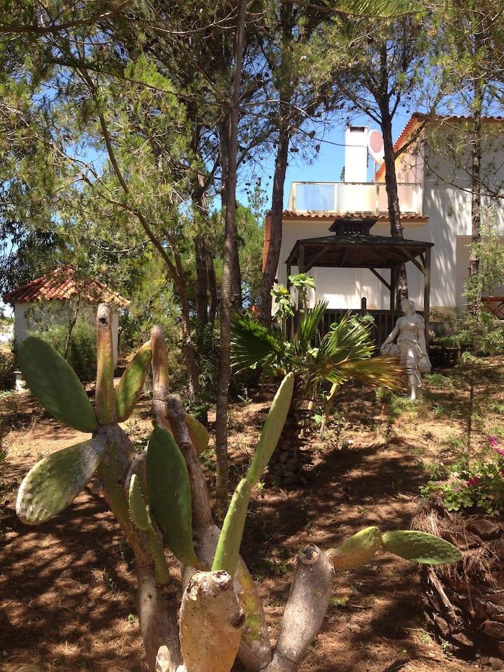 Wavin'Trees Ericeira ~ Pinhal: Pool,Garden&Hotub